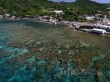 Pobřeží ostrova Roatán