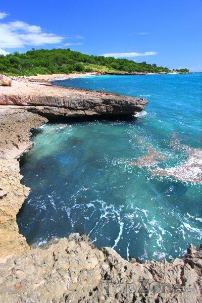 Fotka, Foto Pobřeží rezervace Guánica (Portoriko)