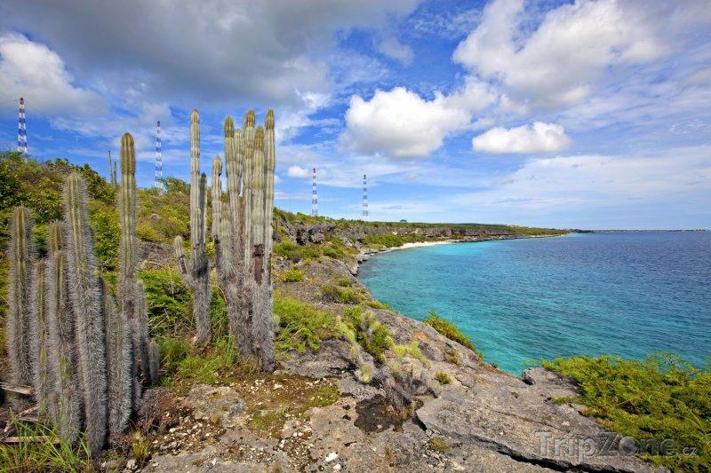 Fotka, Foto Pohled na pobřeží (Bonaire)