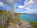 Pohled na pobřeží