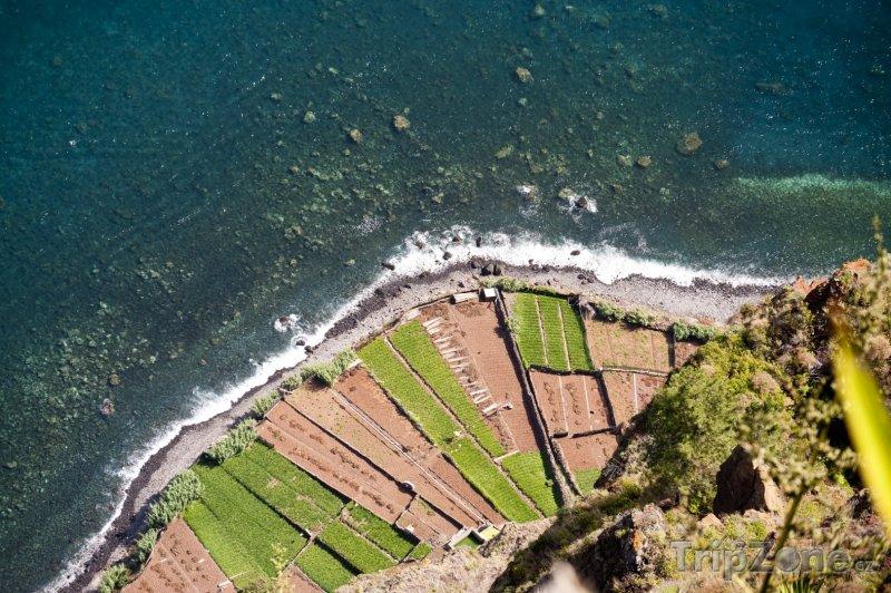 Fotka, Foto Pole na břehu moře (Funchal, Portugalsko)