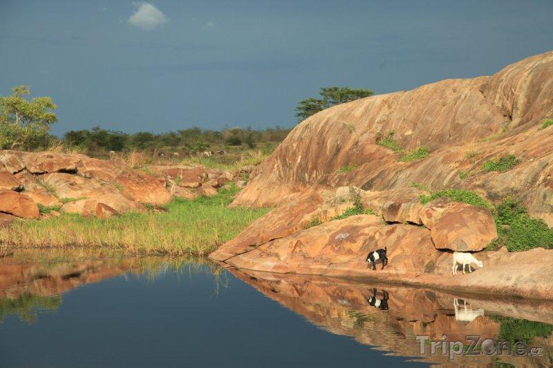 Fotka, Foto Řeka Abuket (Uganda)