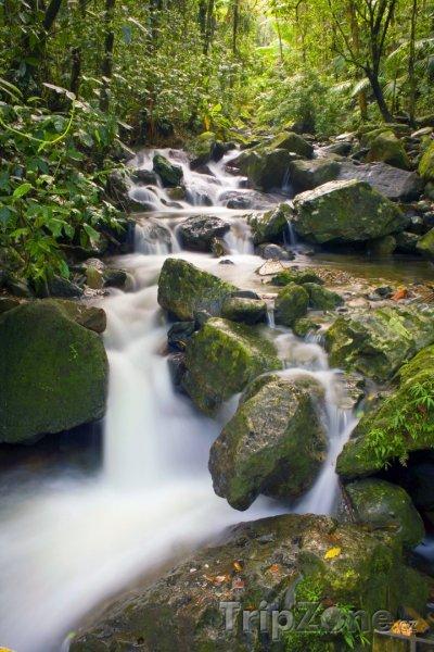 Fotka, Foto Řeka El Yunque (Portoriko)