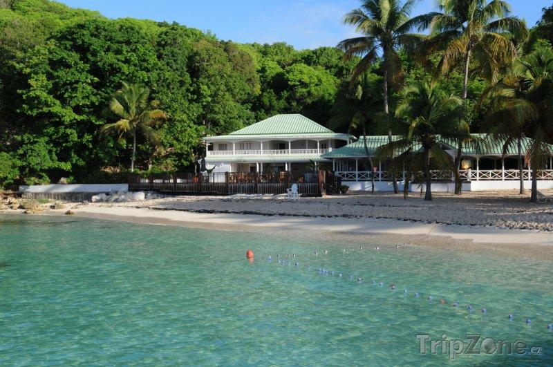 Fotka, Foto Restaurace na pláži v Sainte-Anne (Guadeloupe)
