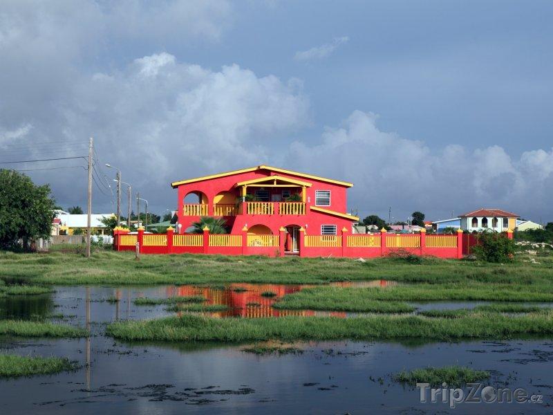 Fotka, Foto Rezidence na ostrově Bonaire (Bonaire)