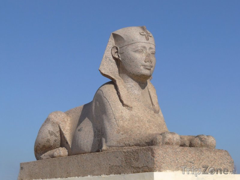 Fotka, Foto Sfinga (Alexandrie, Egypt)