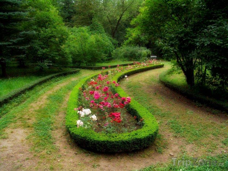 Fotka, Foto Stepanavan Dendropark (Arménie)