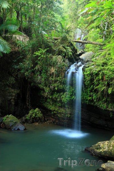 Fotka, Foto Vodopád Juan Diego v pralese El Yunque (Portoriko)