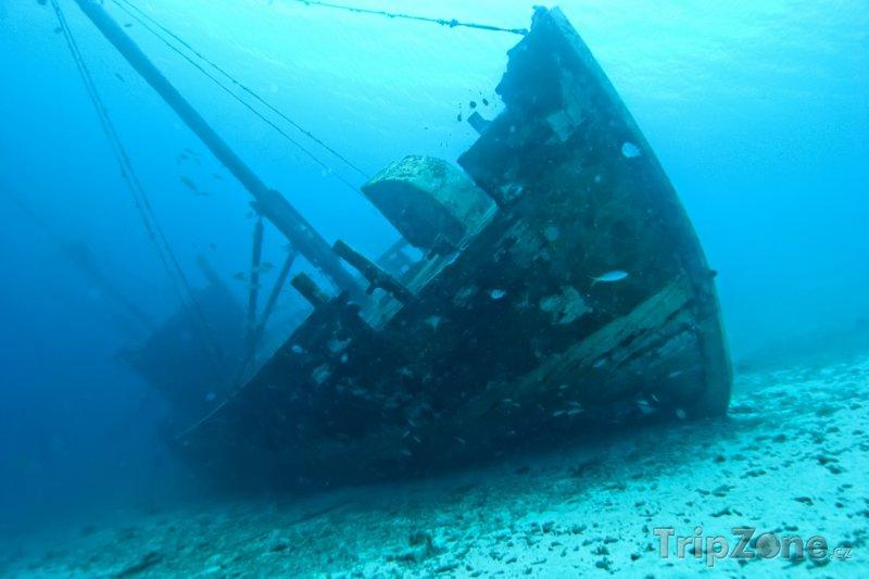 Fotka, Foto Vrak lodi na dně moře (Bonaire)