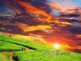 Západ slunce nad čajovou plantáží