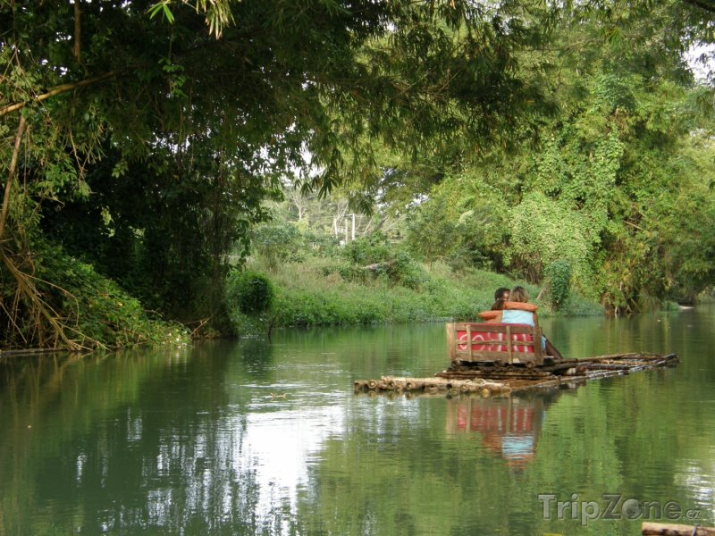 Fotka, Foto Bambusový vor na řece Martha Brae (Jamajka)