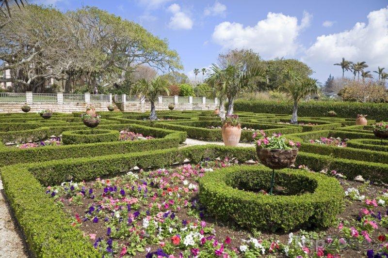 Fotka, Foto Botanická zahrada (Bermudy)