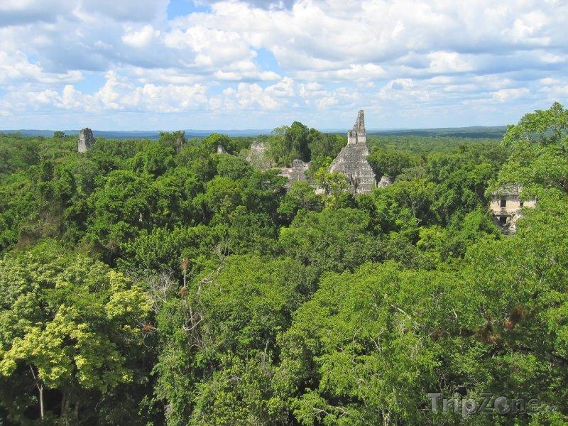 Fotka, Foto Chrám Tikal v džungli Peten (Guatemala)