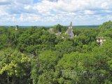 Chrám Tikal v džungli Peten