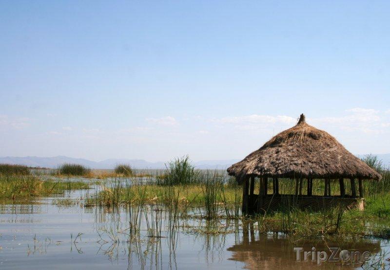 Fotka, Foto Chýše v močále (Etiopie)
