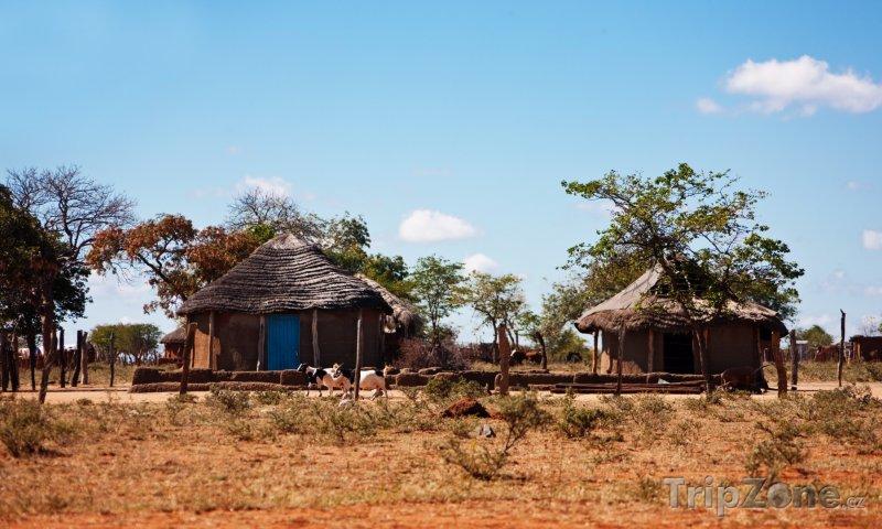 Fotka, Foto Chýše v poušti (Botswana)