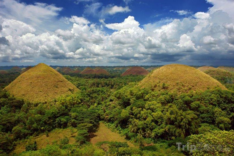 Fotka, Foto Čokoládové kopce (Filipíny)