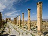 Decumanova cesta v Timgadu