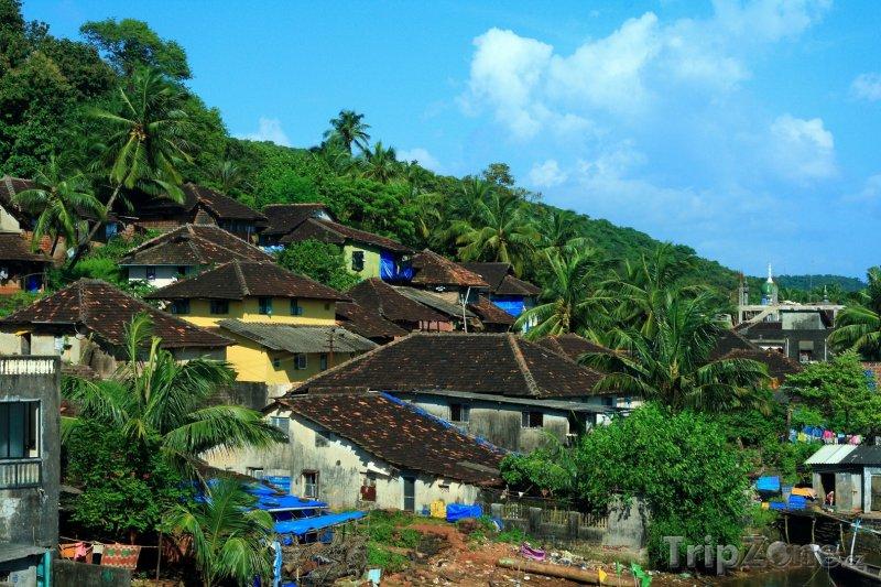 Fotka, Foto Domy na okraji džungle (Indie)