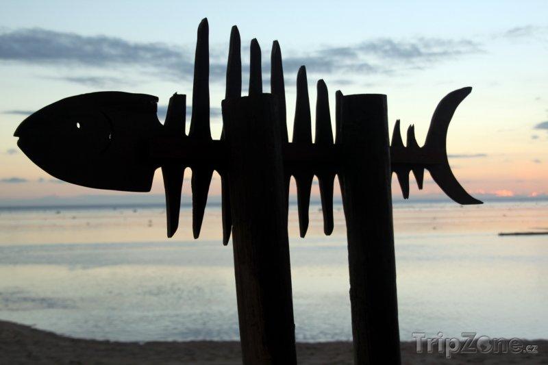 Fotka, Foto Dřevěná ryba na pláži (Fidži)