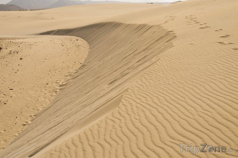 Fotka, Foto Fuerteventura, písečné duny (Španělsko)