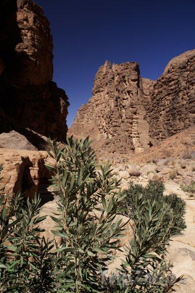 Fotka, Foto Horský pás Tassili n'Ajjer na Sahaře (Alžírsko)