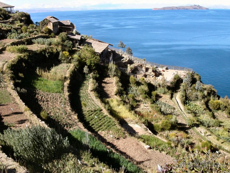 Fotka, Foto Isla del Sol u jezera Titicaca (Bolívie)