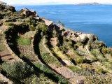 Isla del Sol u jezera Titicaca