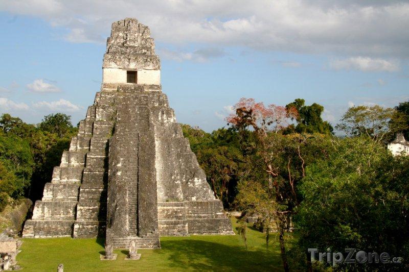 Fotka, Foto Jaguárova pyramida v mayském městě Tikal (Guatemala)