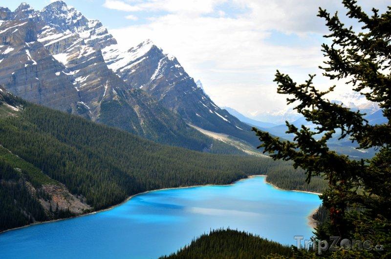 Fotka, Foto Jezero Peyto v národním parku Banff (Kanada)