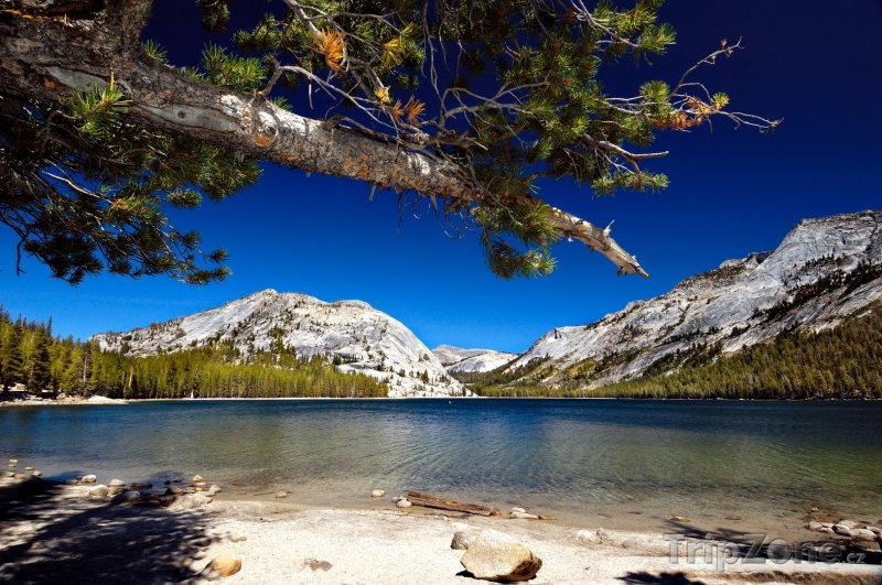 Fotka, Foto Jezero Tenaya v Yosemitském národním parku (USA)