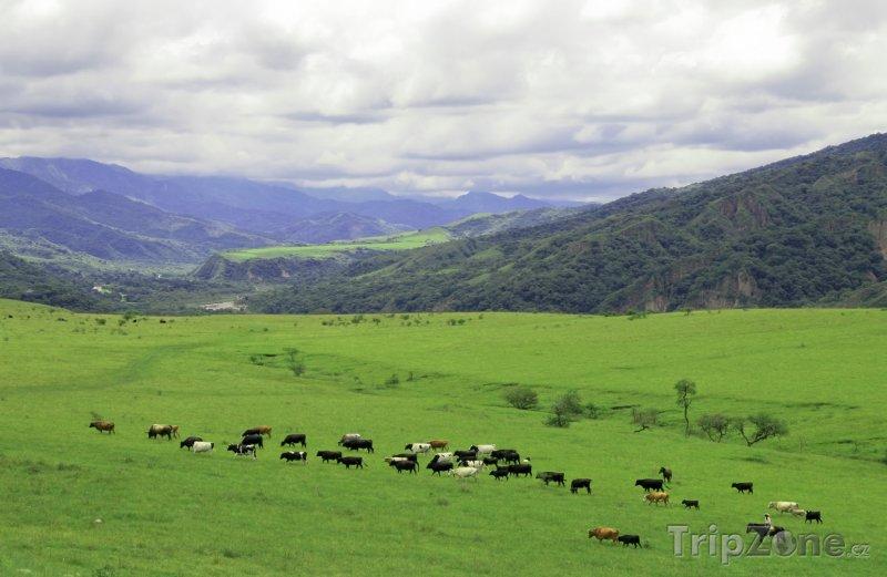 Fotka, Foto Krajina v provincii Salta (Argentina)