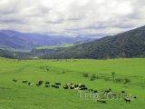 Krajina v provincii Salta