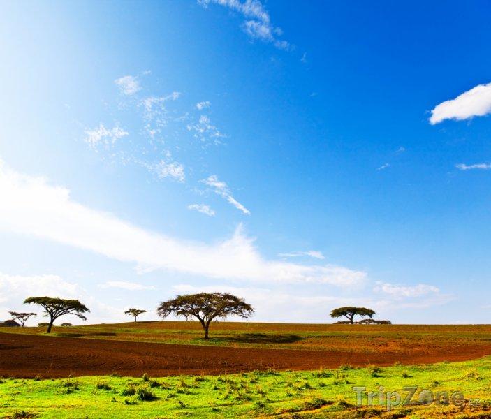 Fotka, Foto Krajina (Etiopie)