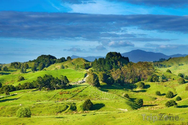 Fotka, Foto Krajina (Nový Zéland)