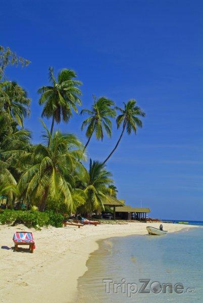 Fotka, Foto Lehátka na pláži (Fidži)