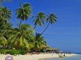 Lehátka na pláži