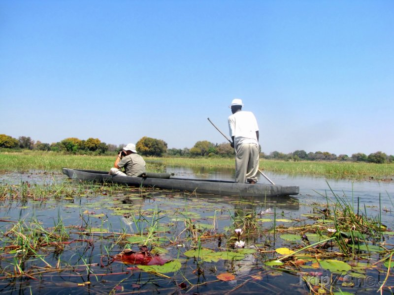 Fotka, Foto Makoro, kánoe používané na řece Okavango (Botswana)