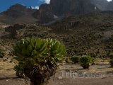 Masiv Mount Kenya