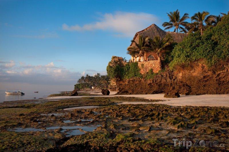 Fotka, Foto Mombasa, pobřeží (Keňa)
