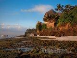 Mombasa, pobřeží