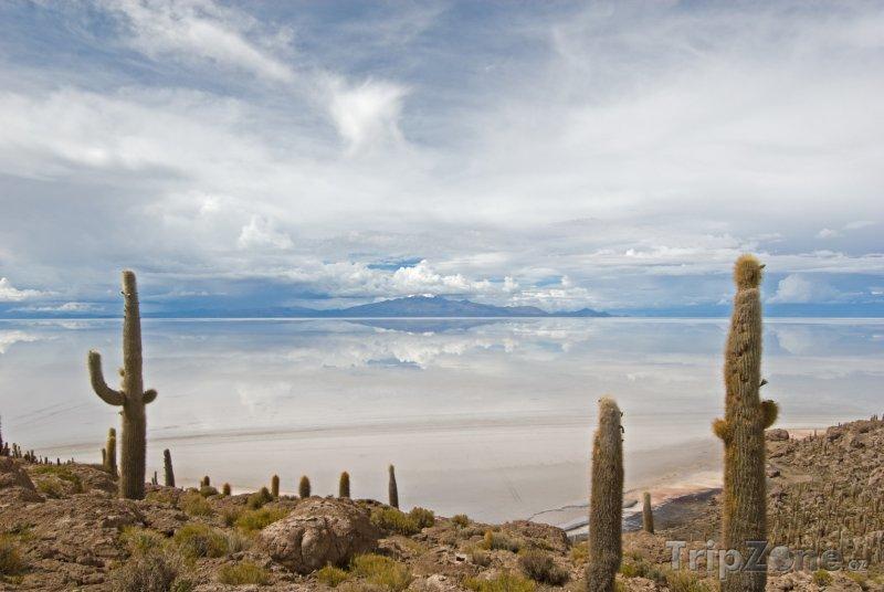 Fotka, Foto Ostrov Isla del Pescado a jezero Salar (Bolívie)