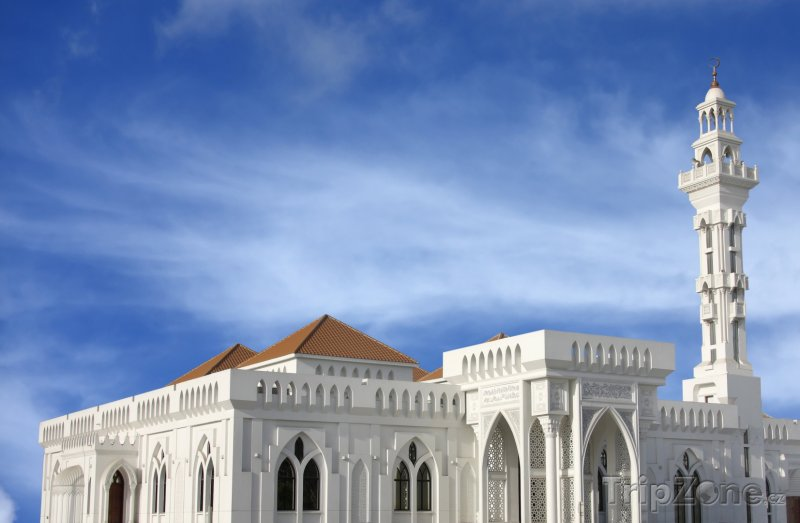 Fotka, Foto Palác Al-Qudaibiya (Bahrajn)