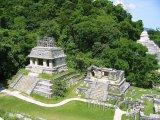 Palenque, mayské chrámy