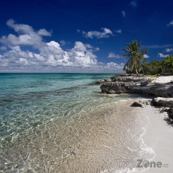 Fotka, Foto Pláž Hampstead (Dominika)