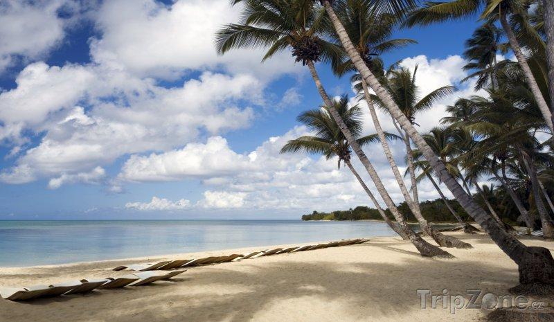 Fotka, Foto Pláž Point Baptiste (Dominika)