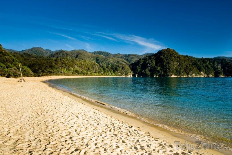Fotka, Foto Pláž Totaranui v národním parku Abel Tasman (Nový Zéland)