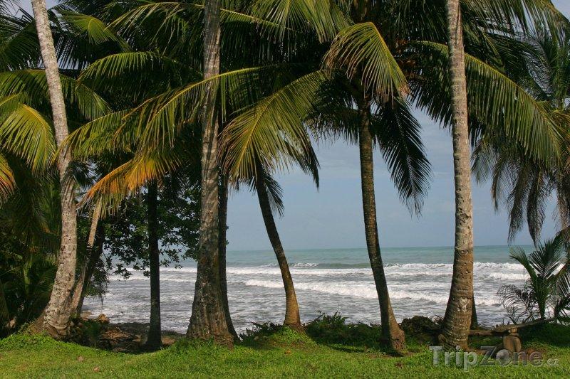 Fotka, Foto Pobřeží města Cahuita (Kostarika)
