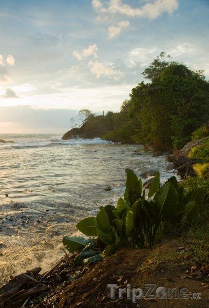 Fotka, Foto Pobřeží v západu slunce (Kostarika)
