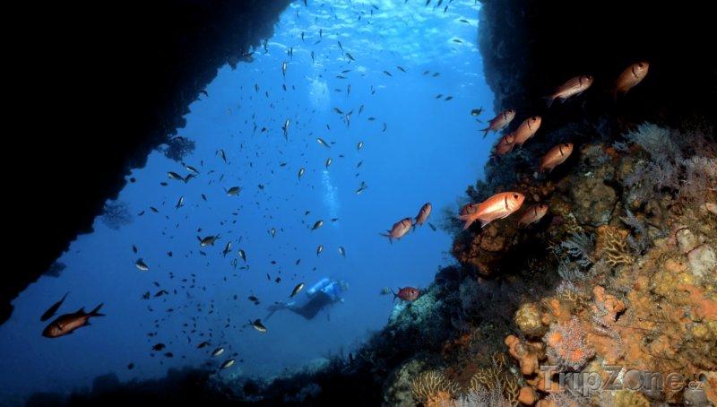 Fotka, Foto Podmořská jeskyně (Dominika)